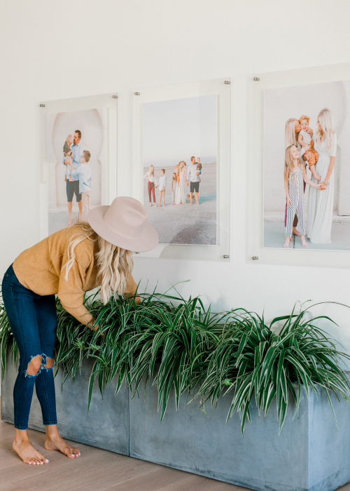 Kailee Wright Adding Plants and Greenery to your Home