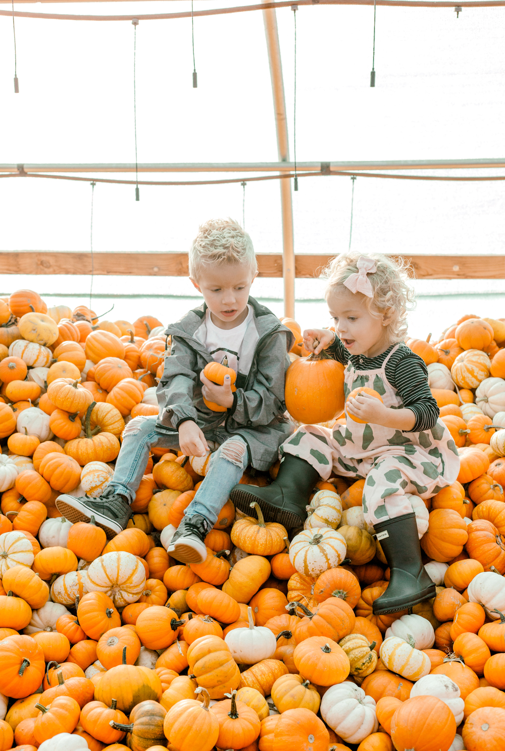 Kailee Wright Nordstrom kids pumpkin patch